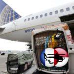 United останавливает сервис по перевозке крупных животных после волны инцидентов