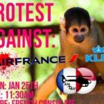 Primates cobayes : plus qu'Air France ou presque